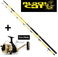 Black Cat Freestyle 3,00m Wallerrute 300-400g + Fin-Nor Offshore 95 Rolle